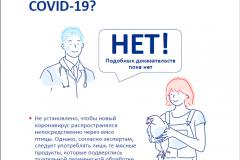 spravochn.inf.po-koronovirusu-10