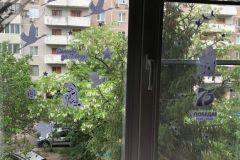 05.05_okna-pobedy-26
